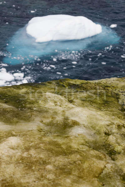 Antarctica landscape Stock photo © benkrut