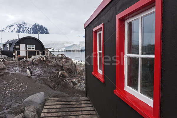 Stock photo: Colorful shed - Antarctica