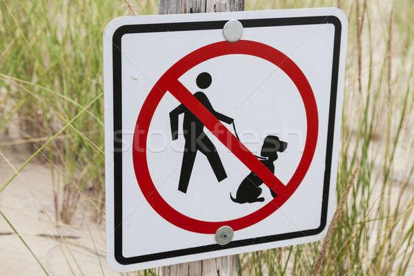 Nem kutyák megengedett felirat tengerpart Wisconsin Stock fotó © benkrut