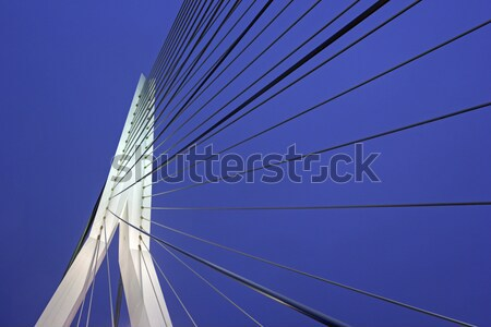 Stock photo: Erasmus Bridge.  Rotterdam, South Holland, Netherlands.