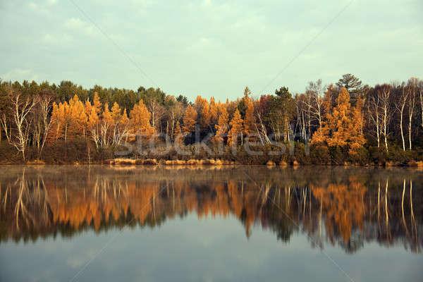 Automne Wisconsin coloré arbres sunrise Photo stock © benkrut