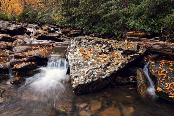 Manhã enfumaçado montanhas parque cair Foto stock © benkrut