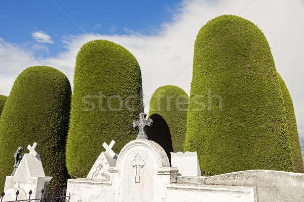 Cemetery of Punta Arenas  Stock photo © benkrut