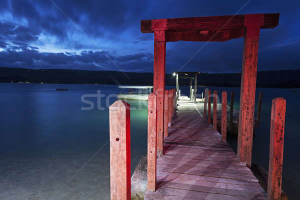 Pôr do sol ilha Vanuatu céu árvore azul Foto stock © benkrut