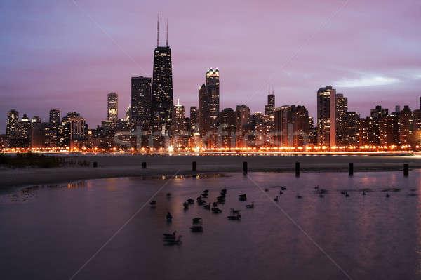 Sunset in Chicago Stock photo © benkrut