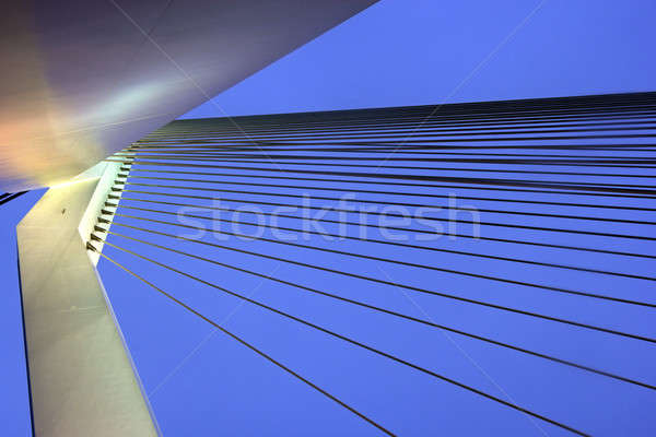 Erasmus Bridge Stock photo © benkrut