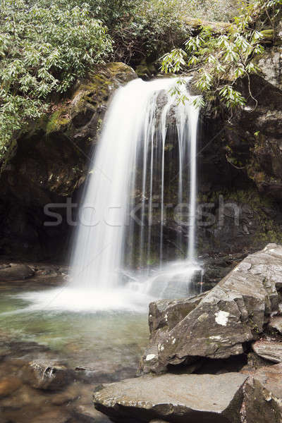 Grotto Falls Stock photo © benkrut
