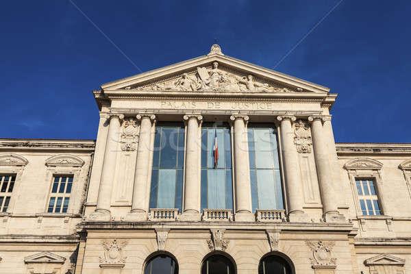 Gerichtsgebäude nice Französisch Stadt Meer Skyline Stock foto © benkrut