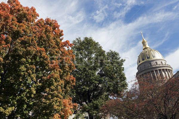 Charleston - State Capitol Building Stock photo © benkrut