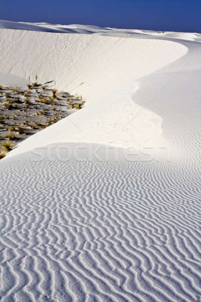 Rano biały wcześnie rano Nowy Meksyk niebo Chmura Zdjęcia stock © benkrut