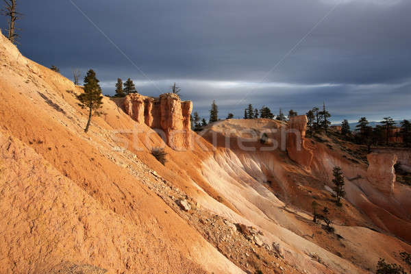 Rock formations in Bryce National Park  Stock photo © benkrut