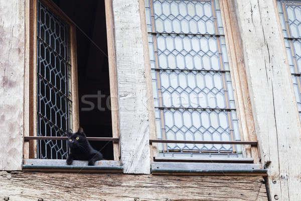 Old window in Dijon Stock photo © benkrut