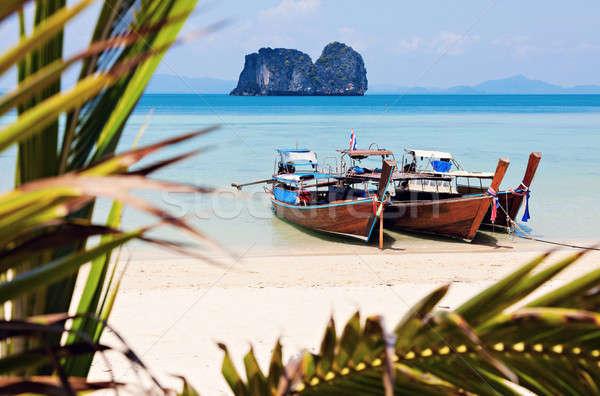Stockfoto: Lang · staart · boten · strand · Thailand · boom