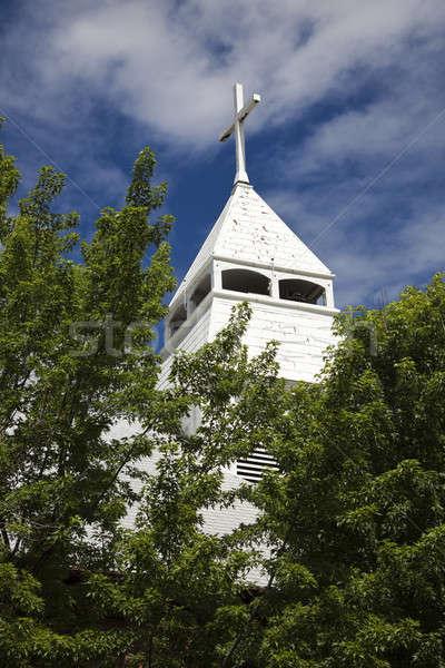 Cattolico chiesa centro albero città estate Foto d'archivio © benkrut