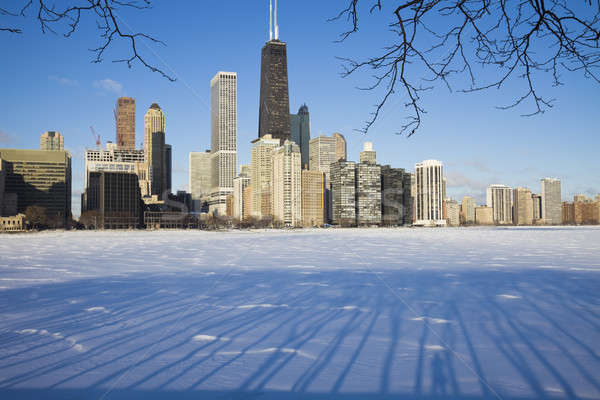 Winter in Chicago Stock photo © benkrut