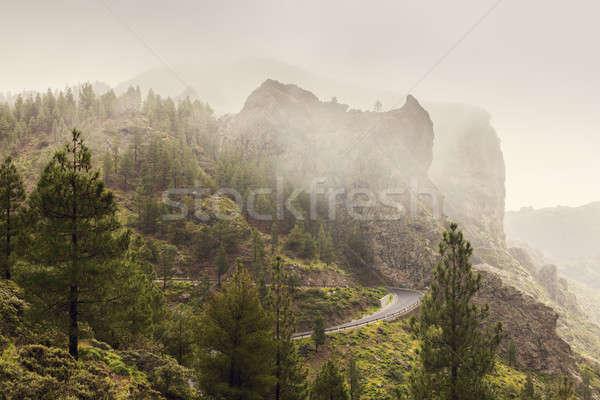 Road to Roque Nublo Stock photo © benkrut