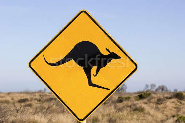 Ugrik kenguru felirat égbolt utca utazás Stock fotó © benkrut