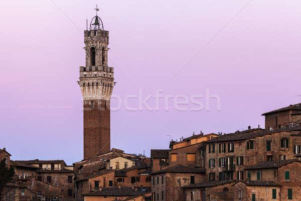 Siena town hall Stock photo © benkrut