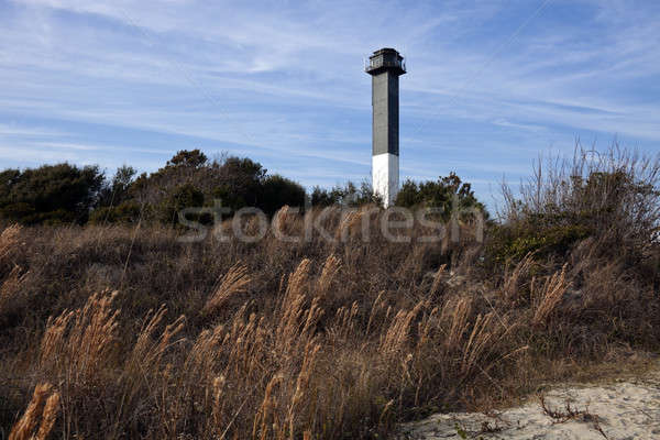 Stockfoto: Vuurtoren · eiland · South · Carolina · gras · architectuur · antenne