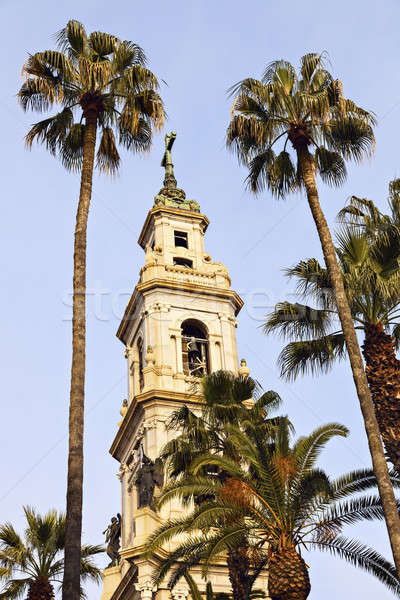 Heiligdom maagd rozenkrans hemel boom palm Stockfoto © benkrut