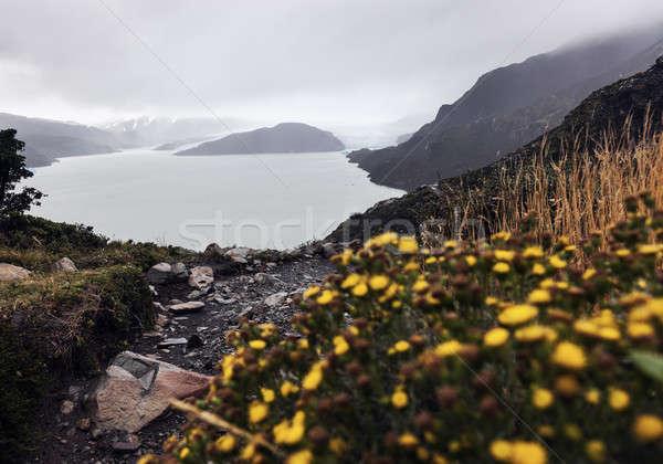 Grigio ghiacciaio Foto d'archivio © benkrut