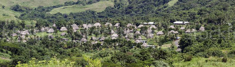 Fidzsi-szigetek hagyományos falu ház természet zöld Stock fotó © benkrut