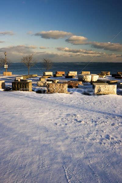 Winter in Chicago Stock photo © benkrut