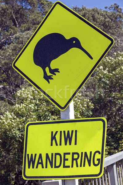 Kiwi wandering sign  Stock photo © benkrut