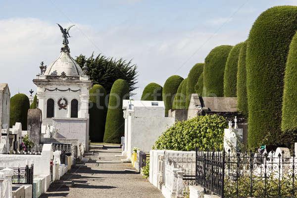 кладбище дерево крест каменные мира мертвых Сток-фото © benkrut