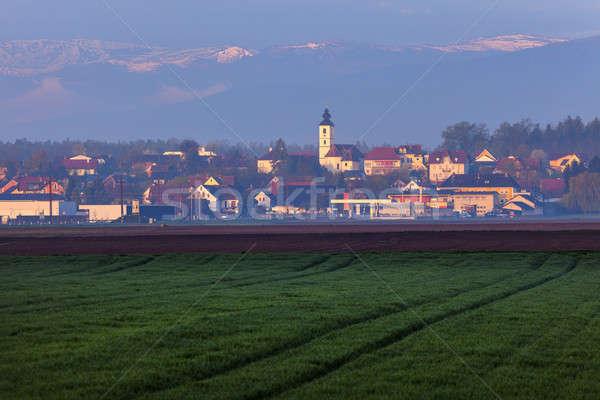 Panorama of  Unterpremstatten  Stock photo © benkrut