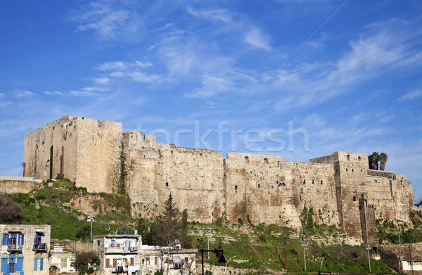 Cittadella mare viaggio castello pietra architettura Foto d'archivio © benkrut