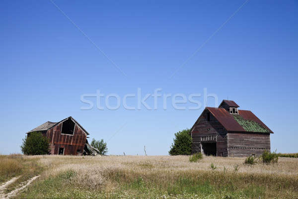 Old farm buildings Stock photo © benkrut