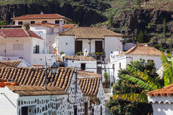 Panoráma délután Kanári-szigetek Kanári-szigetek Spanyolország város Stock fotó © benkrut