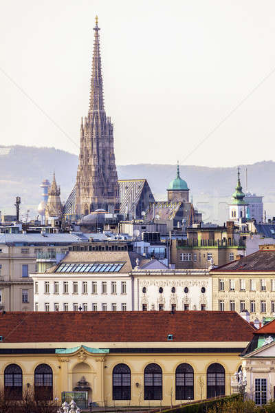 Vienna panorama with St. Stephen's Cathedral Stock photo © benkrut