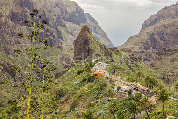 Panorama tenerife gebouw natuur berg Stockfoto © benkrut