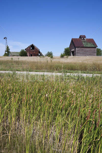 Old farm buildings in the middle of field   Stock photo © benkrut
