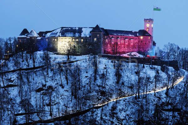 Kale Slovenya kış akşam seyahat mimari Stok fotoğraf © benkrut