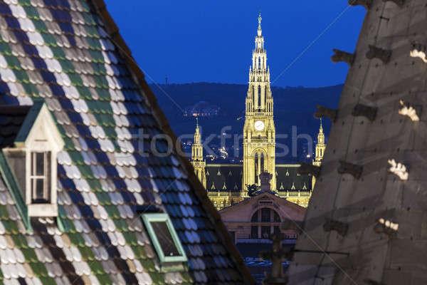 Вена город зале собора Австрия небе Сток-фото © benkrut