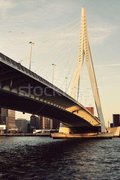 Köprü rotterdam güney Hollanda Hollanda gün batımı Stok fotoğraf © benkrut