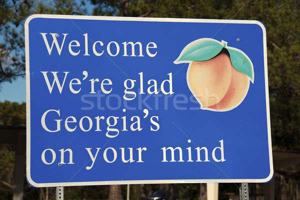 Welkom Georgië teken grens Blauw reizen Stockfoto © benkrut