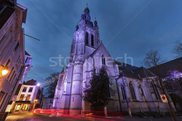 St. Martin's Church in Kortrijk Stock photo © benkrut