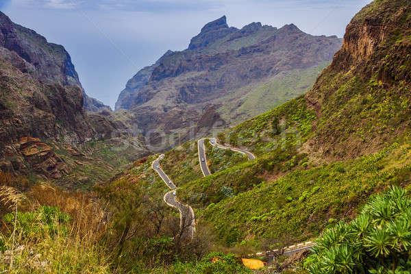 Panorama tenerife canárias edifício natureza montanha Foto stock © benkrut