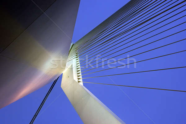 Erasmus Bridge.  Rotterdam, South Holland, Netherlands. Stock photo © benkrut