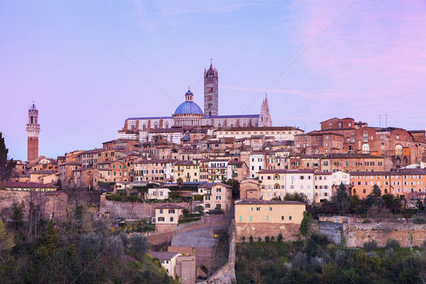 Siena Cathedral in Siena Stock photo © benkrut
