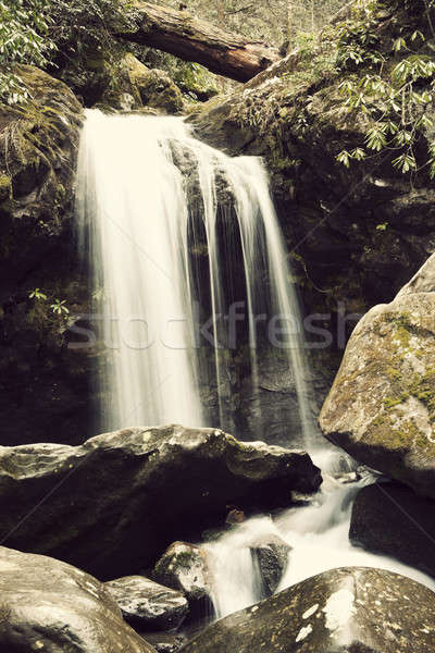 Falls in Great Smoky Mountains Stock photo © benkrut