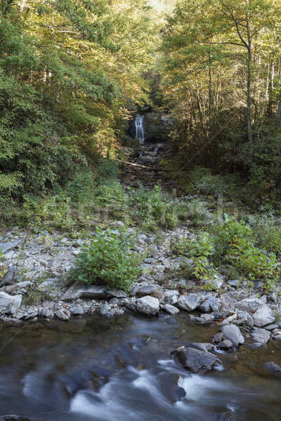 Waterfall and creek in Smoky Mountains Stock photo © benkrut