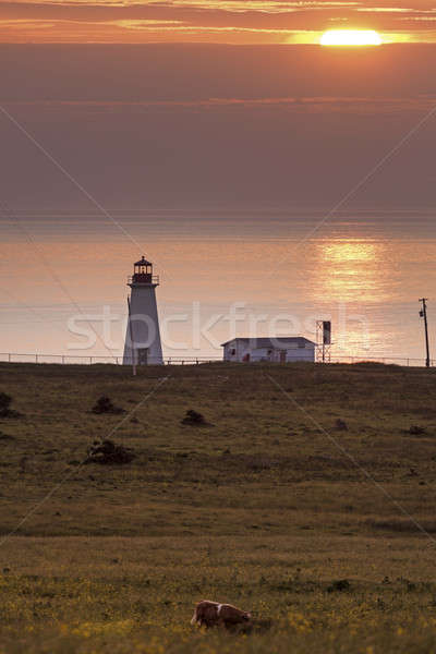 Enragée Point Lighthouse - Nova Scotia, Canada Stock photo © benkrut