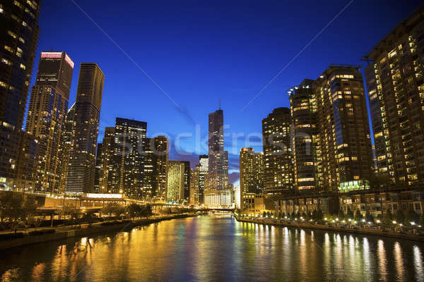 Skyline Chicago rivier Illinois USA gebouw Stockfoto © benkrut