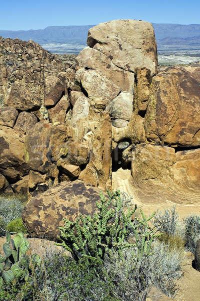 Landscape of Big Bend National Park Stock photo © benkrut