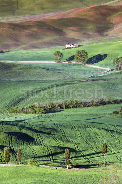 Toscane printemps paysage belle Italie ville Photo stock © benkrut